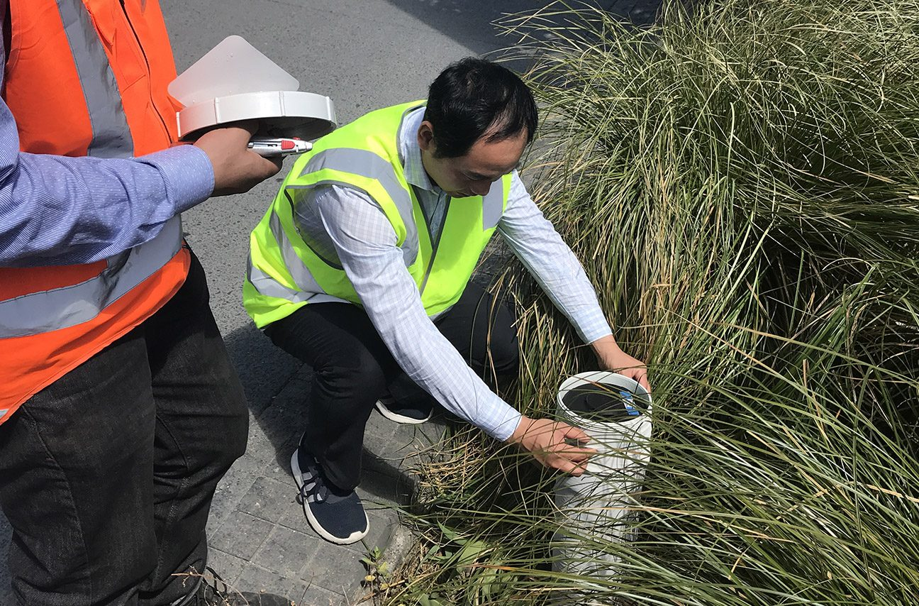 Smarterwater Raingardens